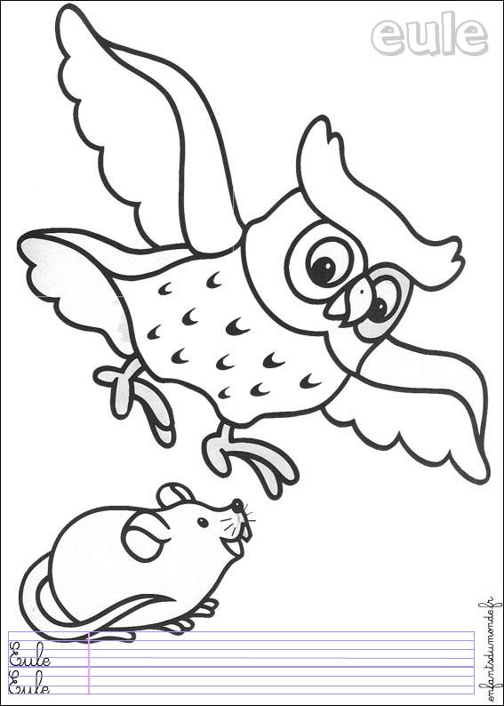 Coloriage Chouette 1 Coloriages Animaux De La Foret En Allemand