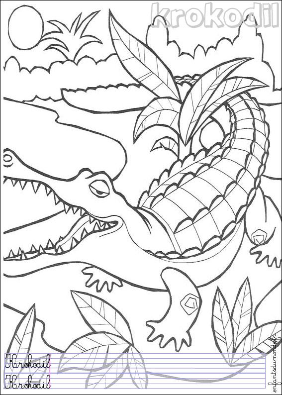 Coloriage Crocodile 1 Coloriages Animaux De La Jungle En Allemand