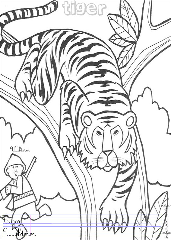 Coloriage tigre 1 coloriages animaux de la jungle en - Coloriage animaux de la jungle ...