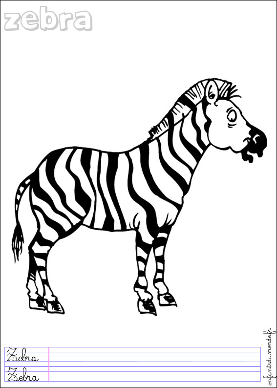 Dessin zebre - Coloriage animaux de la jungle ...