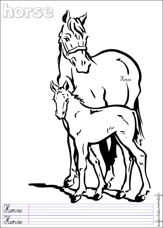 Coloriage cheval 3 coloriages animaux de la ferme en - Coloriage chevaux imprimer ...
