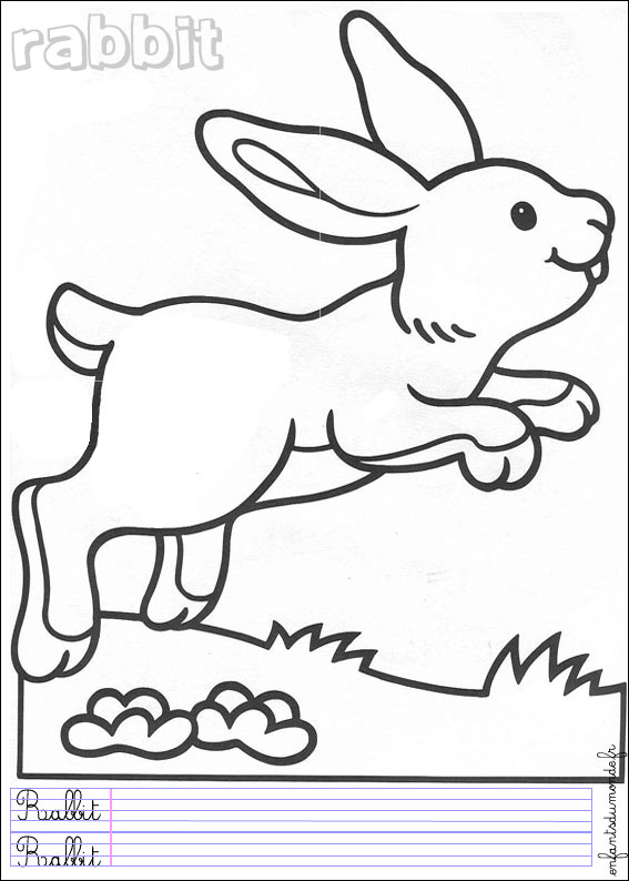 Coloriage lapin 2 coloriages animaux de la ferme en anglais picture car interior design - Animaux de la ferme coloriage ...