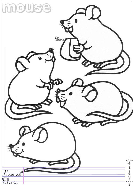 Dessin mignons de souries a colorier - Coloriage petite souris ...