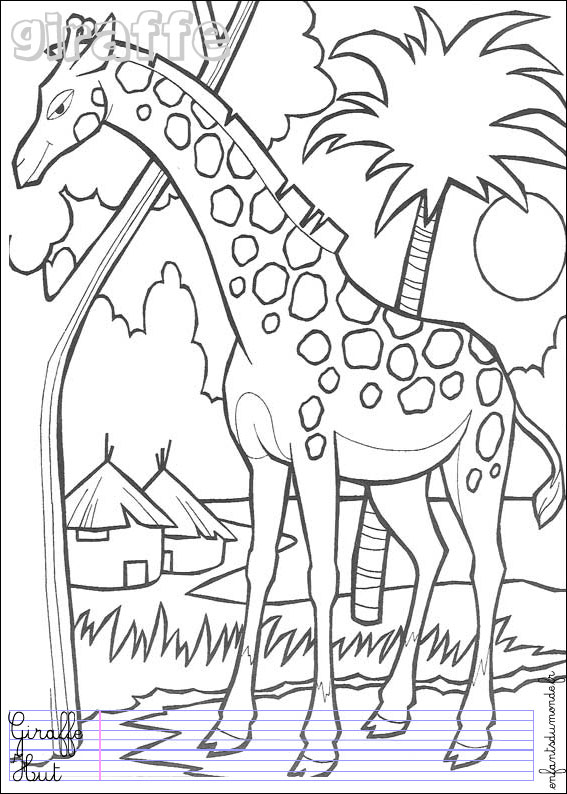 Coloriage animaux jungle - Girafe coloriage ...