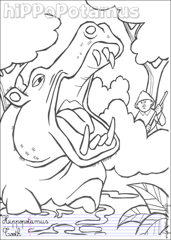 Pin coloriage hippopotame 1 coloriages animaux de la - Coloriage animaux de la jungle ...