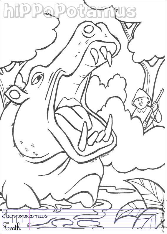 Coloriage hippopotame 1 coloriages animaux de la - Coloriage animaux jungle ...