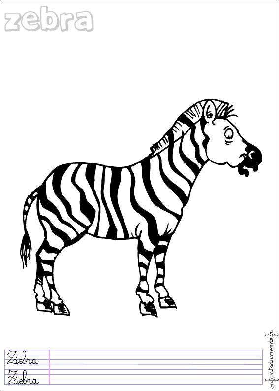 Coloriage Zebre.Coloriage Zebre 2 Coloriages Animaux De La Jungle En Anglais
