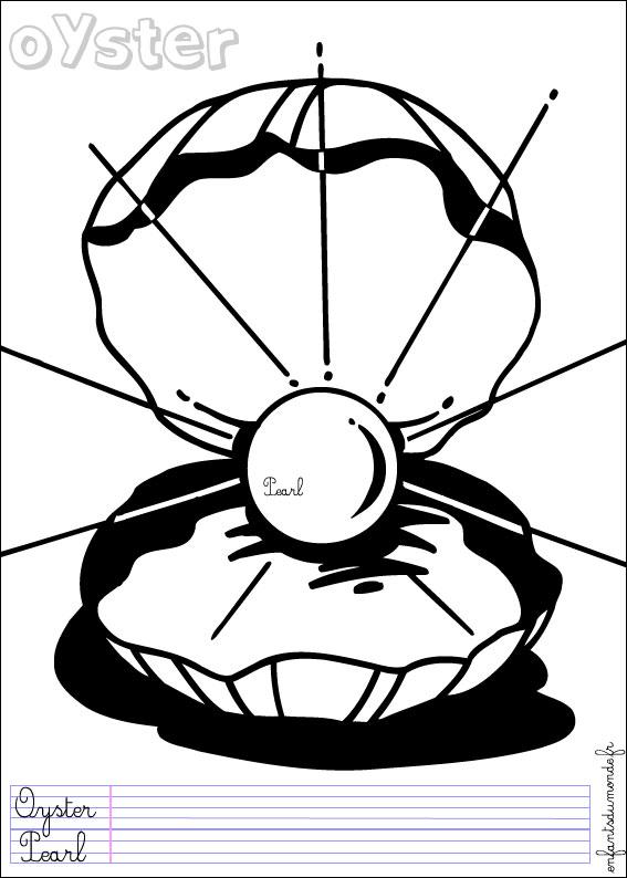 coloriage huitre 1 .:. Coloriages Animaux marins en anglais