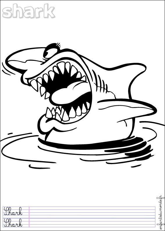 Coloriage requin 2 coloriages animaux marins en anglais - Requin en dessin ...