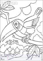 Coloriages oiseaux en anglais - Coloriage toucan a imprimer ...