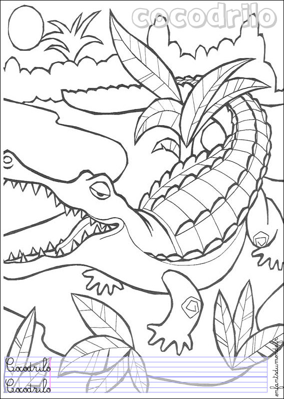 Dessin des animaux de la jungle - Coloriage animaux de la jungle ...