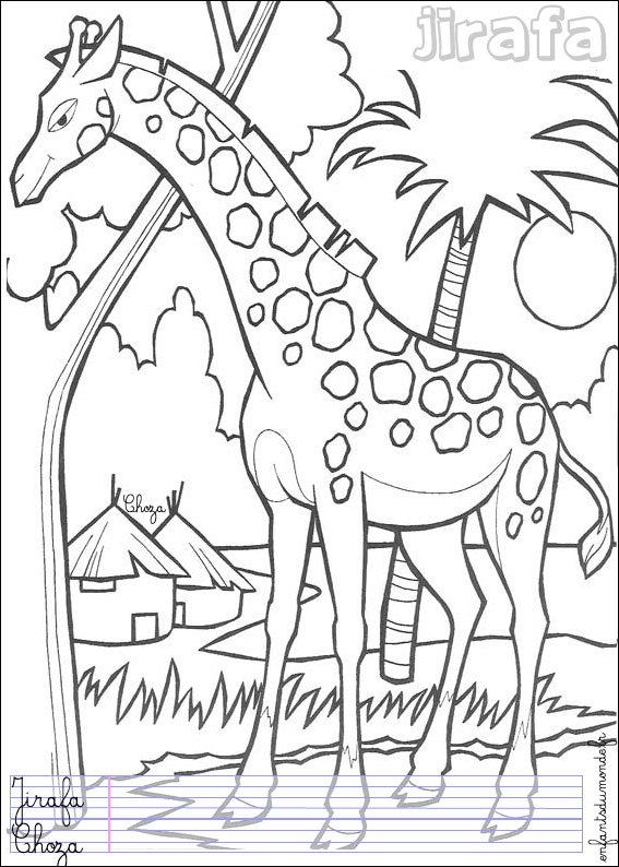 Coloriage girafe 1 coloriages animaux de la jungle en - Coloriage animaux jungle ...