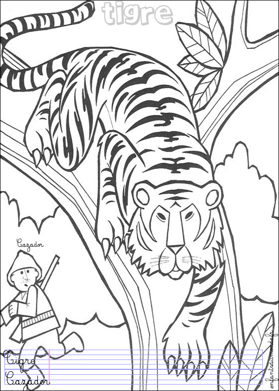 Coloriage tigre 1 coloriages animaux de la jungle en - Dessin de jungle ...