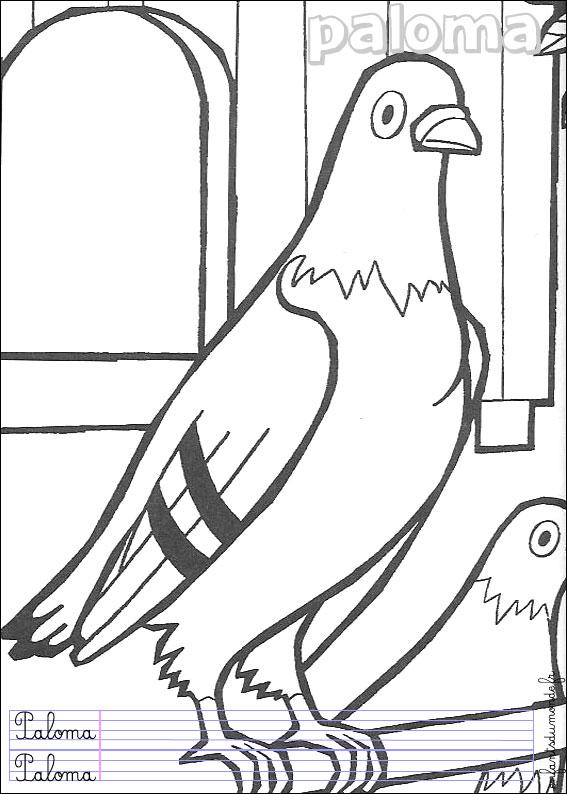 Coloriage pigeon 1 coloriages oiseaux en espagnol - Dessin pigeon ...