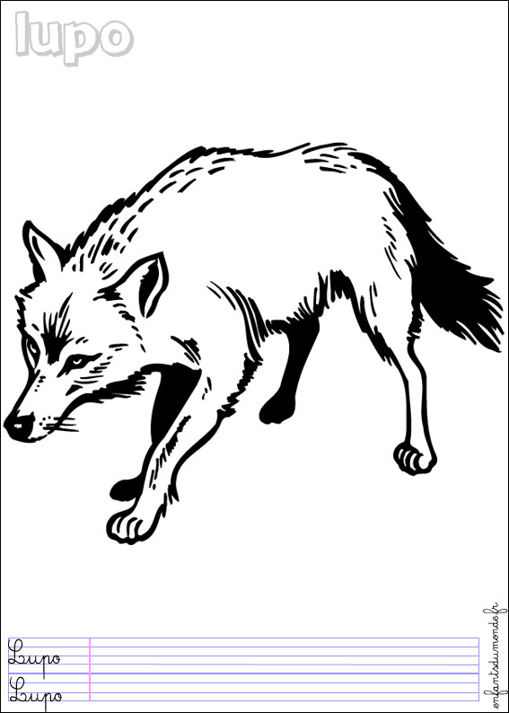Loup coloriage - Coloriages loup ...