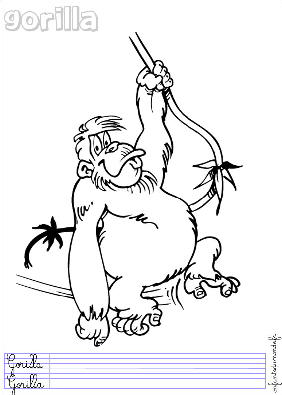 Coloriage singe 2 coloriages animaux de la jungle en - Coloriage animaux de la jungle ...