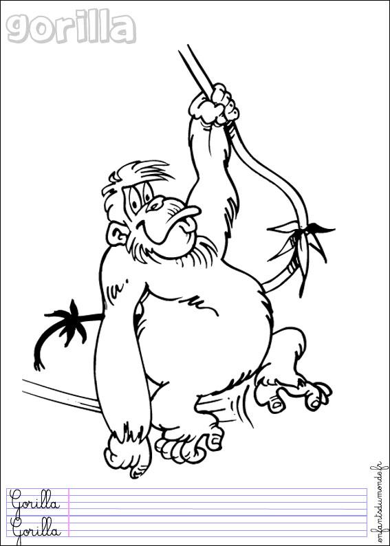Coloriage singe 2 coloriages animaux de la jungle en - Coloriage animaux jungle ...
