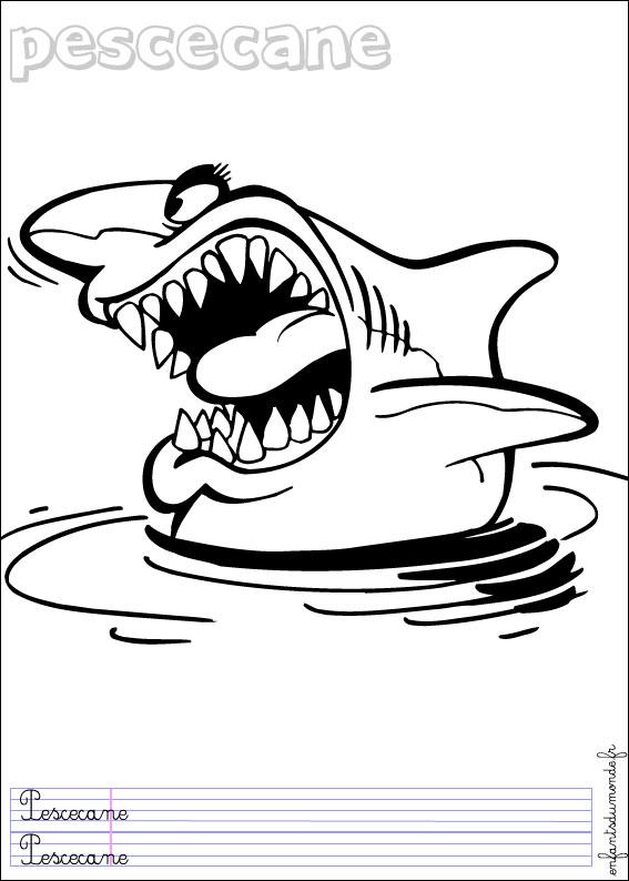 Tatouage polynesien requin - Coloriage de requin ...